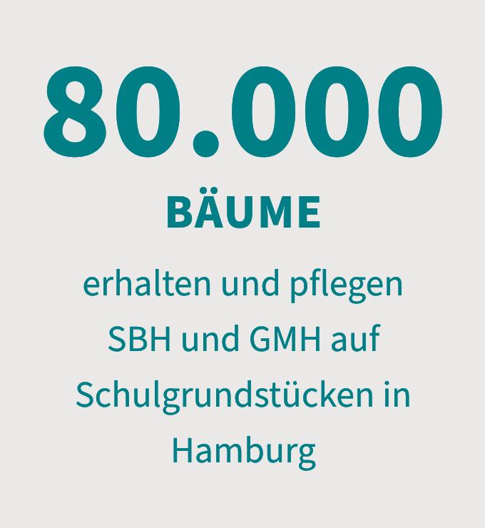 80.000 Bäume erhalten und pflegen SBH und GMH auf Schulgrundstücken in Hamburg